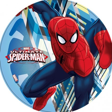 Disque azyme gâteau Spiderman 21cm - Différents modèles