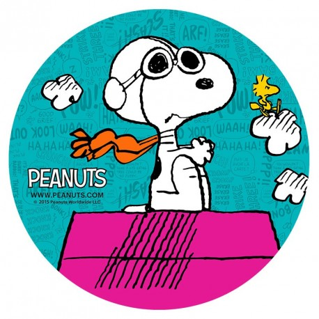 Disques azymes Snoopy -Différents modèles