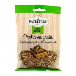 Praliné en grains 100 g