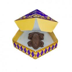 Moule à Chocogrenouille en chocolat + 8 boîtes Chocogrenouille - Harry Potter