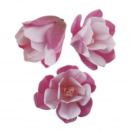 6 magnolias roses en azyme