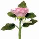 """Emporte-pièces """"fleurs de Lys"""""""