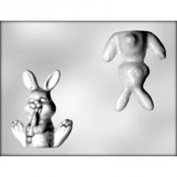 """Moule à chocolat 3D """"lapin et sa carotte"""""""