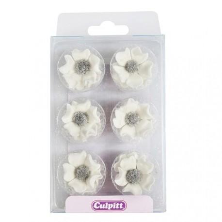 12 Mini anémones blanches
