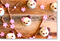 Biscuit panda avec arômes alimentaires